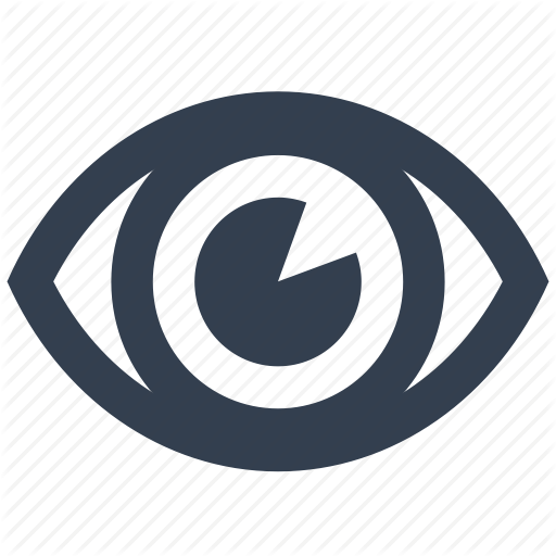 Eye, Look, Safety, Security, View Icon