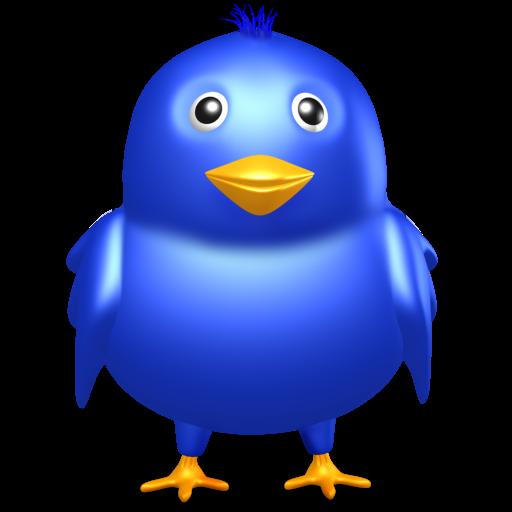 Twitter Bird Icon Iconshow