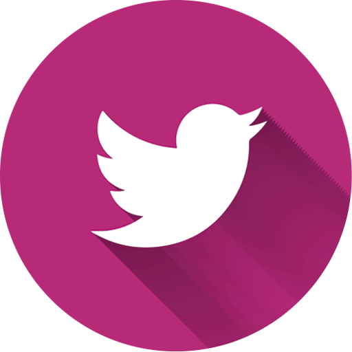 Pink Twitter Logo Transparent Png Clipart Free Download