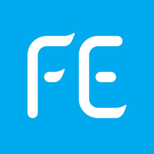 Fe Explorer Pro App Data Review