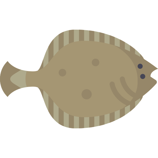 Flounder Fish Png Icon