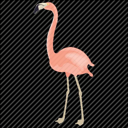 African Animal, Bird, Flamingo, Phoenicopteridae, Wading Bird Icon