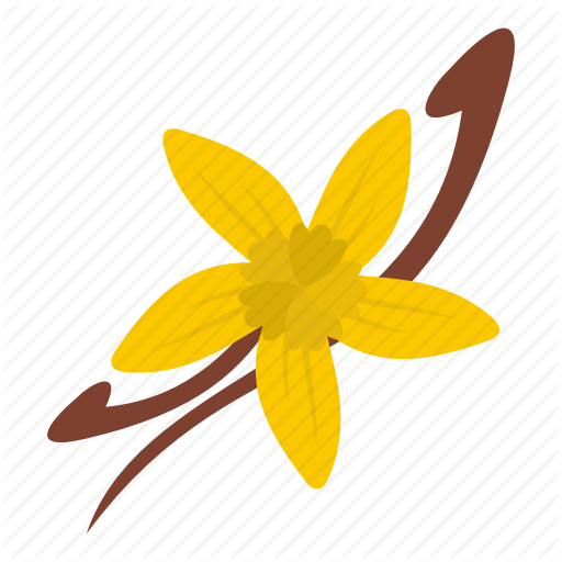 Flavor, Flower, Natural, Nature, Organic, Spice, Vanilla Icon