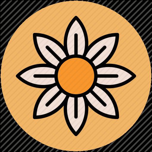 Columbine, Columbine Flower, Flower, Spring Wild Flower, Wild