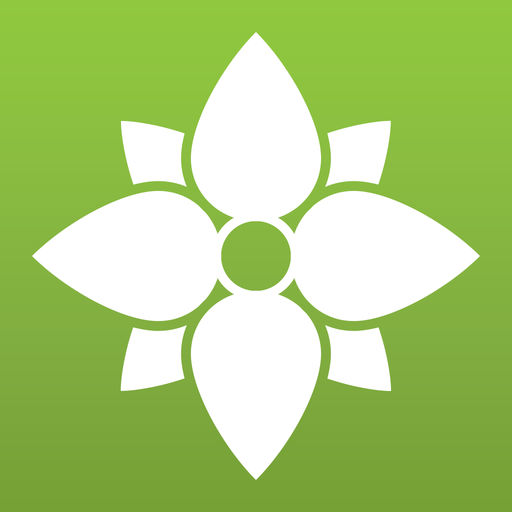Proflowers Send Flowers, Bouquets, Plants