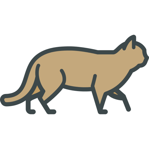 Wild Cat Png Icon