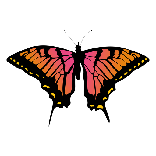 Big Butterfly Icon