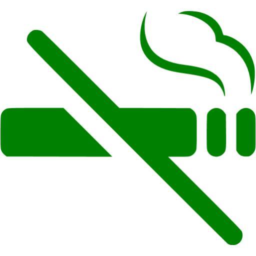 Green No Smoking Icon