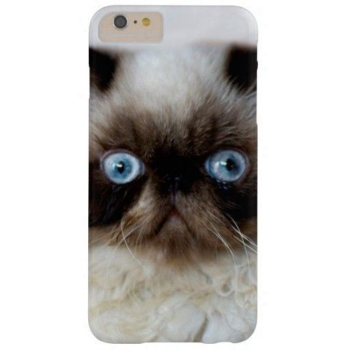 Funny Cat Iphone Plus Case For Girls