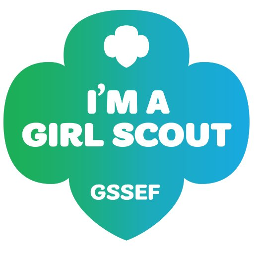 Girl Scouts Of Se Fl