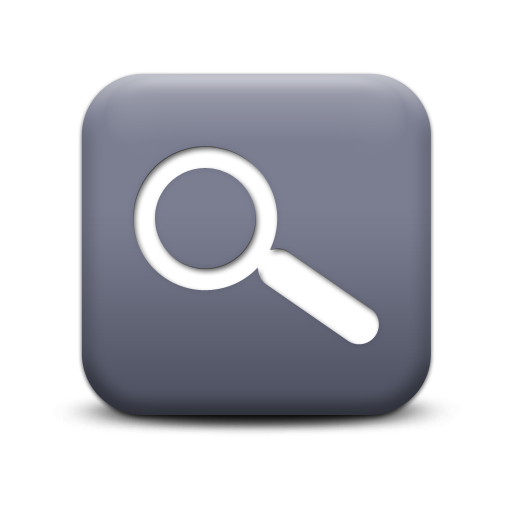 Magnifying Glass Save Icon Format