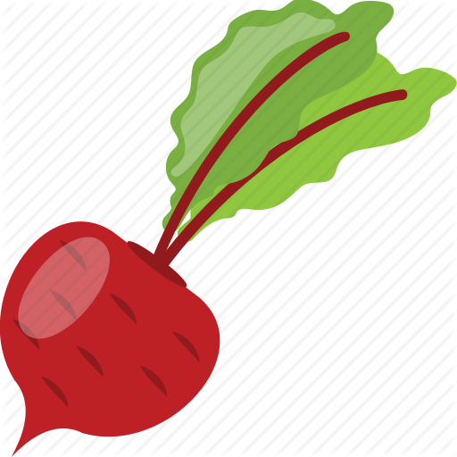 Beet Plant, Beetroot, Golden Beet, Red Vegetable, Taproot Icon