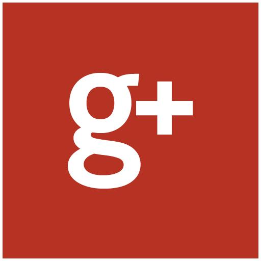 Free Google New Icons Tag Icon Ninja