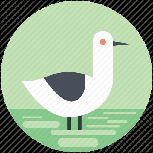 Animal, Bird, Goose, Pet Animal, Standing Goose Icon