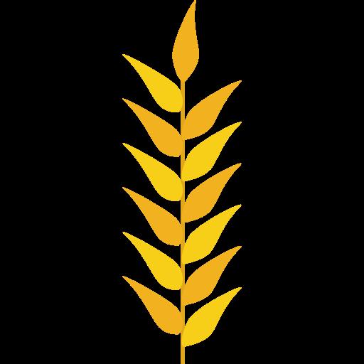 Grains, Wheat Plant, Wheat Grain, Nature, Food, Grain, Wheat Icon