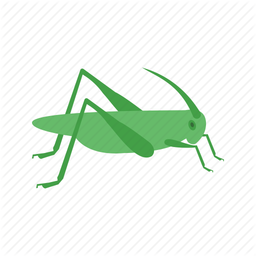 Grasshopper, Head, Infestation, Insect, Locust, Pest, Thorax Icon