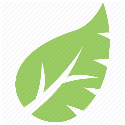 Green Leaf, Leaf, Leaf Design, Monstera Leaf, Tropical Leaf Icon