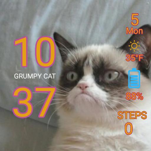Grumpy Cat For Zenwatch