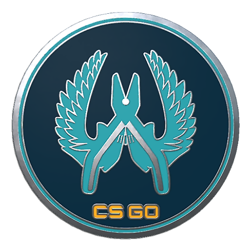 Csgo Collectible Pin Guardian Png Icon