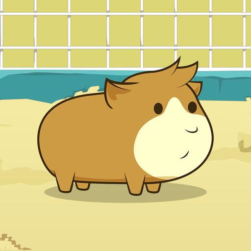 Guinea Pig Evolution