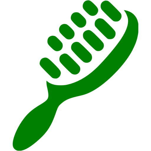 Green Hair Brush Icon