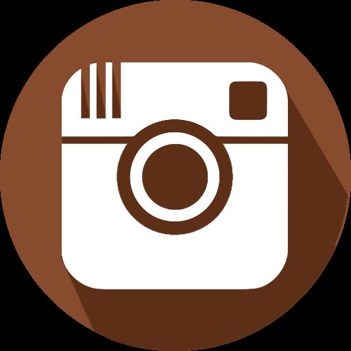 Social Media Instagram Icon