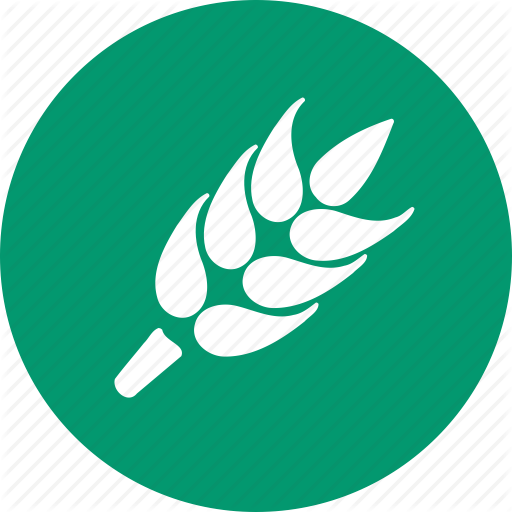 Agriculture, Ear, Harvest, Rice, Rye, Spike, Wheat Icon