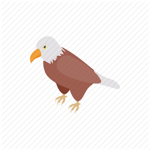 Animal, Bird, Eagle, Hawk, Isometric, Mascot, Wing Icon