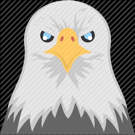 Animal, Eagle Head, Fierce Bird, Hawk Eye, White Eagle Face Icon