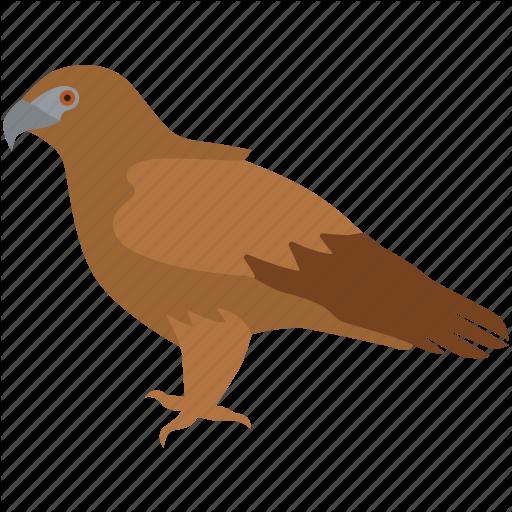 Bird, Eagle, Falcon, Flight, Golden Eagle, Hawk, Raptor Icon