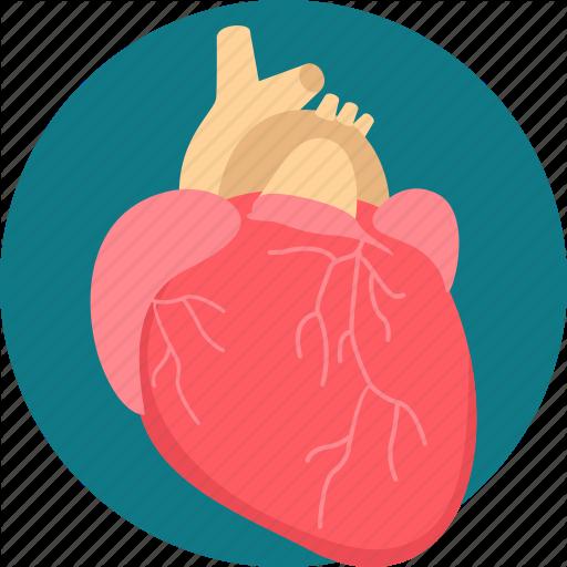 Healthcare, Heart, Heart Attack, Heart Care, Surgery, Treatment Icon