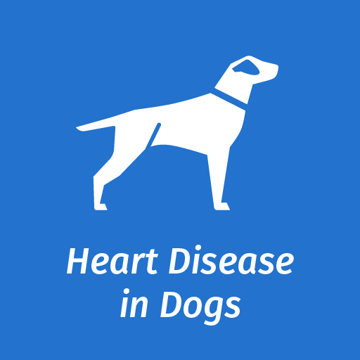 Information On Recognizing Signs Of Heart Disease In Dogs Elanco Uk