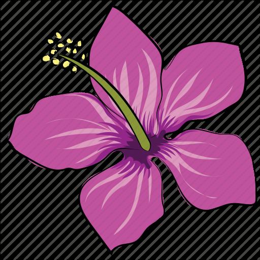 Flower, Hibiscus, Hibiscus Flower, Rhododendron, Rhododendron