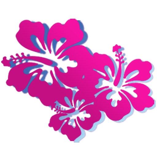 Hibiscus Flowers Icon