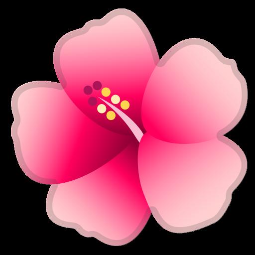 Hibiscus Icon Free Of Noto Emoji Animals Nature Icons