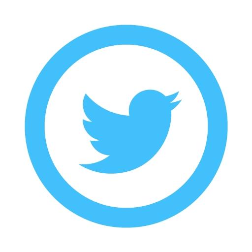 Twitter Icon Deyes High School