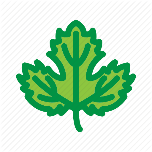 Beer, Brew, Brewing, Hop, Leaf, Nature, Plant Icon