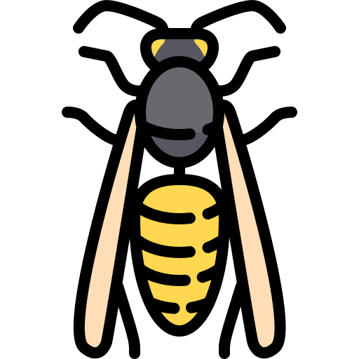 Wasp Png Icon