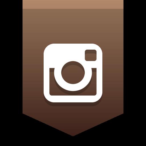 Instagram Icon Social Media Buntings Iconset Social Media Icons