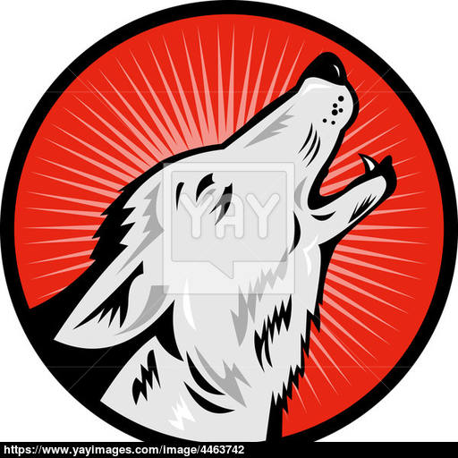 Wolf Howling Side View Image