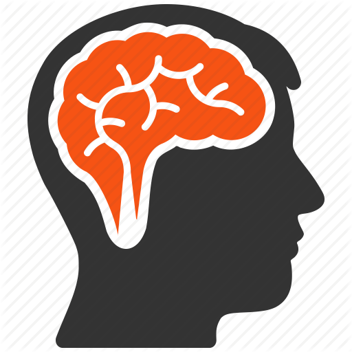 Head And Brain Png Transparent Images