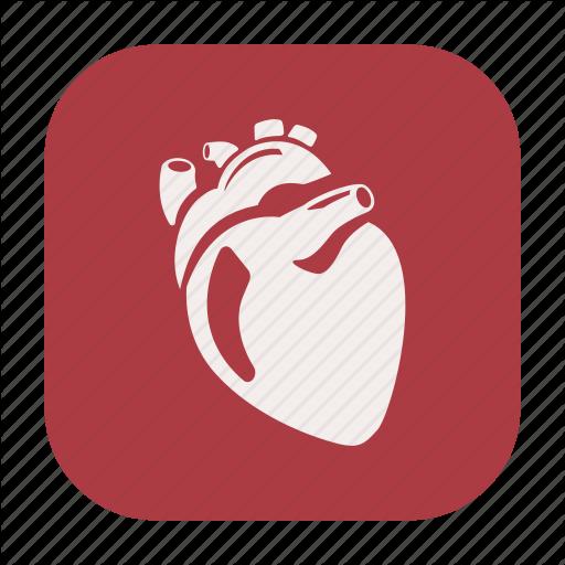 Endurance, Exercise, Fitness, Healthcare, Heart, Human Heart