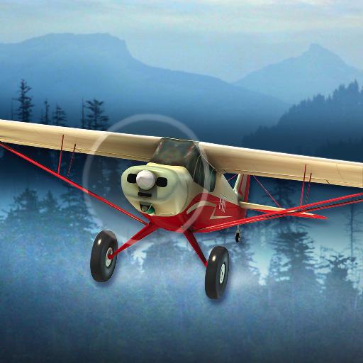 Airplane Fly Bush Pilot Flight Simulator Appstore