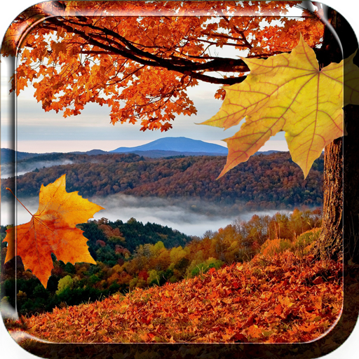Autumn Leaves Live Wallpaper Download Apk Para Android Aptoide
