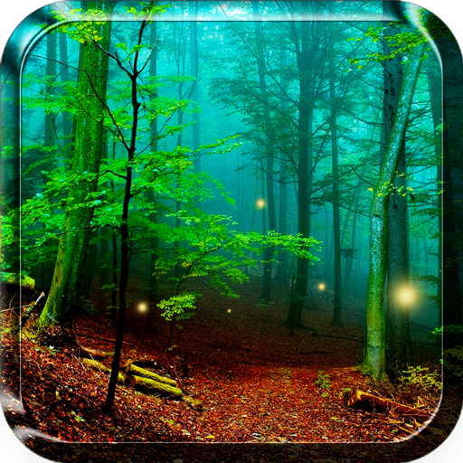 Forest Live Wallpaper Download Apk Para Android Aptoide