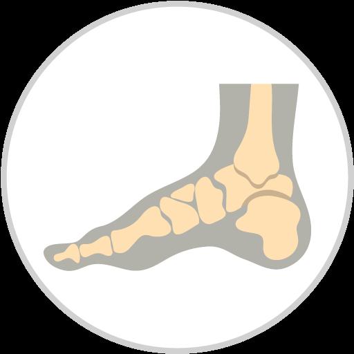 Icon Foot X Ray Circle Border