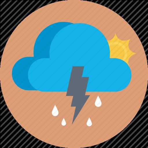 Conifer Windbreak, Forest Weather, Forest Wind, Tree Wind, Weather