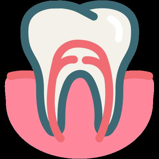Dental, Dental Treatment, Dentist, Gum, Gums Tooth, Root Canal
