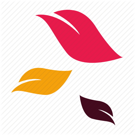 Autumn, Colorful, Colourful, Fall, Falling Leaves, Leaves, October