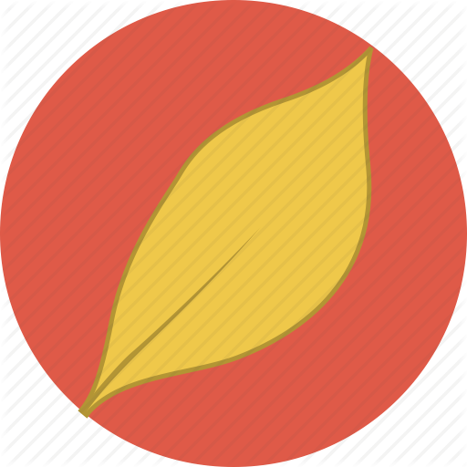 Pictures Of Autumn Leaf Icon